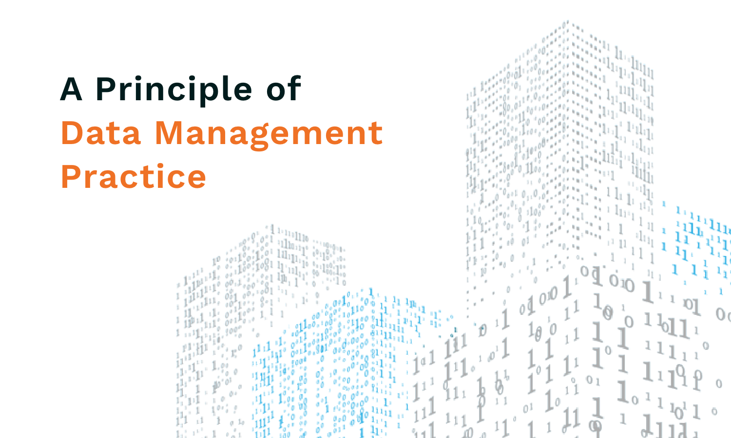 Value Your DATA, it is an ASSET! <span> Principle of Data Management Practice</span>